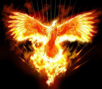 phoenixrising